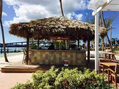 Bahamas club lesbian nassau — bild 5