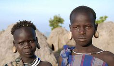 Three independent reports have warned that the controversial Gibe III dam, and land grabs for plantations, risk imminent 'catastrophe' in Ethiopia's Lower Omo Valley.       Half a million tribal people in Ethiopia and Kenya stand to be overwhelmed by these ...