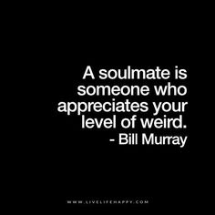 Live Life Happy: A soulmate is someone who appreciates your level of weird. Bill Murray The post A Soulmate Is Someone Who Appreciates appeared first on Live Life Happy. Great Quotes, Quotes To Live By, Me Quotes, Inspirational Quotes, Love Quotes For Him Funny, Robert Kiyosaki, The Words, Affirmations, Live Life Happy