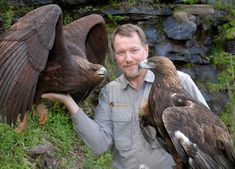 "Floyd Scholz, Master Bird Carver "" the Vermont Raptor Academy Wood Carving Art, Wood Carvings, Eagle In Flight, Bird Poster, Golden Eagle, Wooden Bird, Blue Heron, Carved Wood, Wood Sculpture"