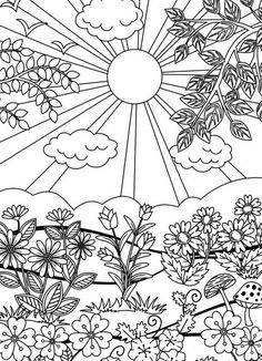 20 coloring pages for adult #ricldp #coloring