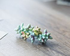Floral hair clip  hair barrette  succulent hair by GentleDecisions on Etsy - made of polymer clay
