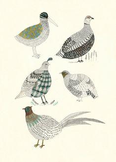 Game Birds by Katfrankillustration on Etsy, $40.00