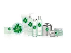 Fuji Green Tea by The Body Shop is a Aromatic Green fragrance for women and men. This is a new fragrance. Fuji Green Tea was launched in Top notes. The Body Shop, Glowing Skin Diet, Tea Facts, Cosmetics News, Perfume, New Fragrances, Tea Ceremony, Beauty Make Up, Body Lotion