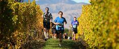 St Clair Vineyard Half Marathon
