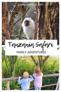 If you are looking to take a family safari, Tanzania is the perfect destination! It is currently open to US tourists. Tanzania has the vast planes of Serengeti, Mount Kilimanjaro National Park, Ngorongoro Crater (in the Ngorongoro conservation) and so much more. On a Tanzania safari with kids, you will get to experience amazing nature, wildlife, culture and more. Find out everything about a Tanzania safari with kids here. | Family Travel | African Safari | #travelmadmum #familytravel… Travel With Kids, Family Travel, Audley Travel, Mount Kilimanjaro, Tanzania Safari, Canoe Trip, Mum Blogs, African Safari, Family Adventure