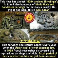 Gernal Knowledge, General Knowledge Facts, Knowledge Quotes, Did You Know Facts, Things To Know, Weird Facts, Fun Facts, India Facts