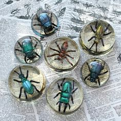Paint simple plastic insects and trap them in resin for a fun summer kids project!