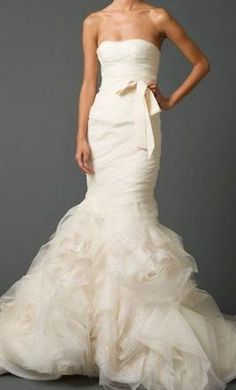 Vera Wang- This is what i want my wedding dress to look like :)   I love Vera Wang!
