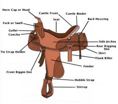 All the different parts of a saddle
