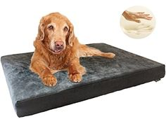Durable Orthopedic Waterproof Memory Foam Pet Dog Bed for Small Medium Extra Large to Big jumbo size pet Washable Cover Microsuede in Gray 55X37X4 -- Continue to the product at the image link.