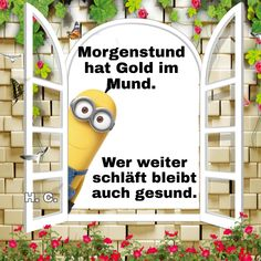 Minions, Bunt, Pictures, Frienship Quotes, Seven Days, Good Morning, Hair Colors, Funny, The Minions