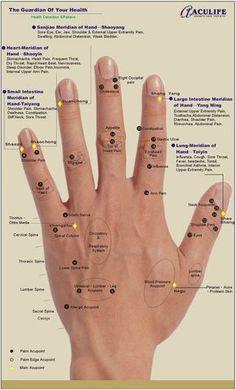 Health & Beauty Jok Quick Academics Aus Byol Meridian Chart Acupressure Su