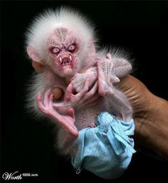 Look at this cute little scary ugly thing