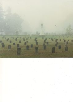 A Famous Victory: the McGavock Confederate Cemetery, Franklin, Tennessee down the road where I grew up Photography Contests, City Photography, Sleep City, Cumberland Gap, Franklin Tennessee, Civil War Photos, Old Churches, Graveyards, Book Show