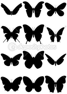 12 butterfly silhouettes