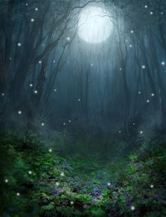 cythereadove:  Magical Forest by PatrickMcEvoy