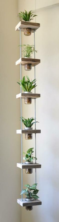 #gardening- vertical gardening into an indoor space! All you need is some salvaged wood, metal rods, bolts and some mason jars! - source- Organics Rx