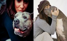 Famous Rescuer Pens Tearful Goodbye To Her Beloved Pit Bull Who Inspired The World - BarkPost