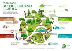 dia internacional del bosque infografia - Google Search Graphic Design Illustration, Character Design, Photoshop, Creative, Google Classroom, Forests, Trees, International Day Of, Woods