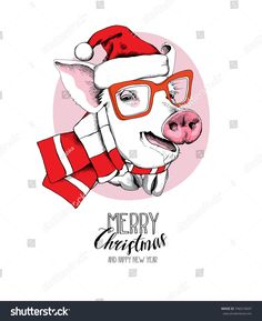 Christmas card. Portrait of the Pig in a red Santa's cap and in a striped scarf on a pink background. Vector illustration.
