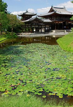 Byōdō-in Temple, Uji City, Kyoto Prefecture, Japan Places Around The World, The Places Youll Go, Places To Visit, Around The Worlds, Japanese Landscape, Japanese Architecture, Landscape Architecture, Go To Japan, Japan Japan