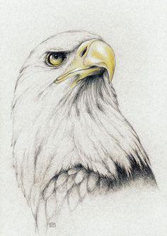 Afbeeldingsresultaat voor eagle tattoo