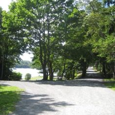 Point Pleasant Park - Halifax, Nova Scotia. A little piece of magic in an amazing city.   My dog and I spent almost every summer day lying by the water (down the left road), tanning, chasing ducks, loving our life together and dreaming about the future.