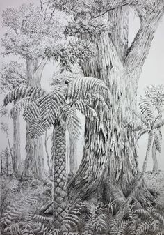 """Totara and tree fern"" by Sharon Egan. Paintings for Sale. Tree Fern, Upcoming Artists, Dont Fall In Love, Shop Art, Buy Art Online, Ferns, Continents, Watercolor Paper, Original Artwork"