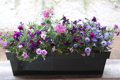 Jardinière fleurie livrée à domicile. Elle est adaptée pour un balcon ensoleillé.  A commander en ligne sur www.fleursaubalcon.com