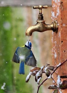 Be thirsty Heart Seek forever without rest . ~ Rumi