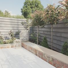 t is so lovely to come home when the sun is shining and sit out here.and I can't believe how healthy my trees look! Small City Garden, Small Garden Design, Garden Spaces, Dream Garden, Back Gardens, Small Gardens, Outdoor Gardens, Garden Cottage, Home And Garden