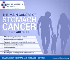 What are the main causes of Stomach Cancer?