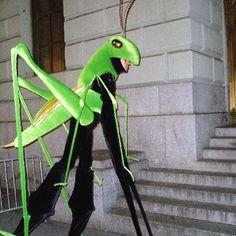 grasshopper costume ideas - Google Search