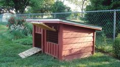 Use wooden pallets and other reclaimed lumber to build this cozy poultry coop.data-pin-do= Chicken Coop Pallets, Backyard Chicken Coops, Backyard Ducks, Chickens Backyard, Backyard Farmer, Duck Enclosure, Duck House Plans, Goose House, Duck Coop