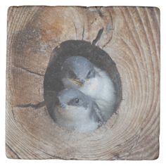 Shop Baby Birds Stone Coaster created by cutestbabyanimals. Stone Coasters, Custom Coasters, Travertine, Hostess Gifts, House Warming, Backdrops, Owl, Birds, Baby