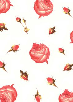 rose print by vintage kit