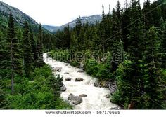 Find Skagway River Flowing Through Valley stock images in HD and millions of other royalty-free stock photos, illustrations and vectors in the Shutterstock collection. Thousands of new, high-quality pictures added every day. Photo Editing, Royalty Free Stock Photos, River, Illustration, Pictures, Photography, Outdoor, Image, Photos