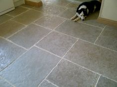Ben has written a blog piece about his favourite natural stone...the Umbrain Limestone. Have a look at his blog...http://www.floorsofstone.com/blog/