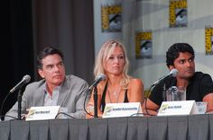 Covert Affairs panel, Comic Con     I like this one