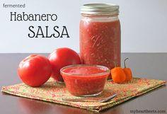 Habanero Salsa (fermented) - My Heart Beets