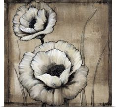 Tim O'Toole Poster Print Wall Art Print entitled Neutral Poppies II, None