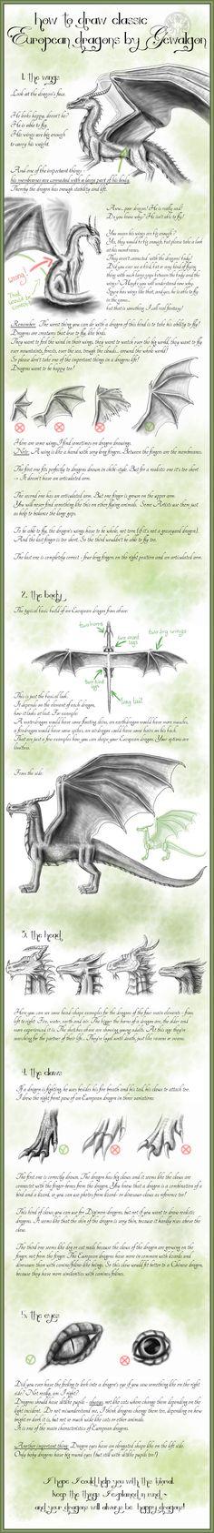 How to draw Classic European Dragons by Gewalgon by Gewalgon on DeviantArt