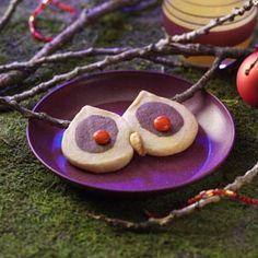 Owl Cookies Recipe from Taste of Home