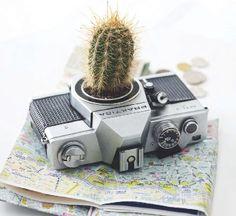 camera planter