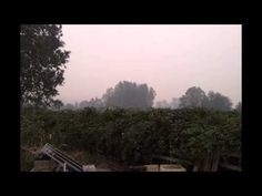 7/31/2013 - Smoke in the sky from the July forest Fires in Grants Pass - YouTube