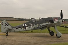 "The Focke-Wulf Fw 190 Würger (""shrike""), also called Butcher-bird."
