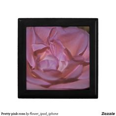 Pretty pink rose trinket boxes