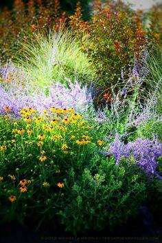 Garden Design New England monochromatic planting schemes] feminine orange flower beds