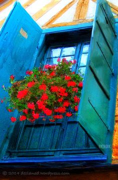 Blue Window | France